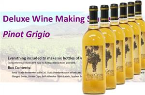 Stonehelm Deluxe Wine Making Starter Kit: Pinot Grigio