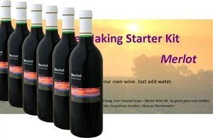Stonehelm Deluxe Wine Making Starter Kit: Merlot